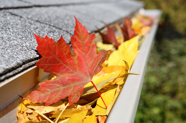Gutter with Leaf
