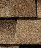 Shakewood Shingle
