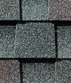 Williamsburg Slate Shingle