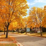 Working on your home in fall