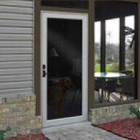 duraguard replacement storm door