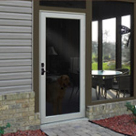 duraguard replacement storm door