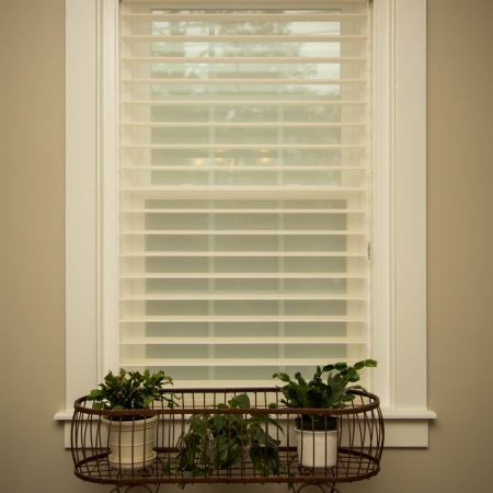 window with sheer blinds