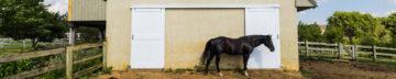 barn door replacement