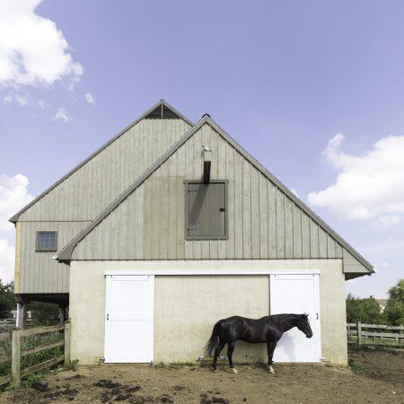 barn doors and siding