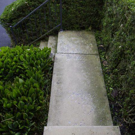 walkway before