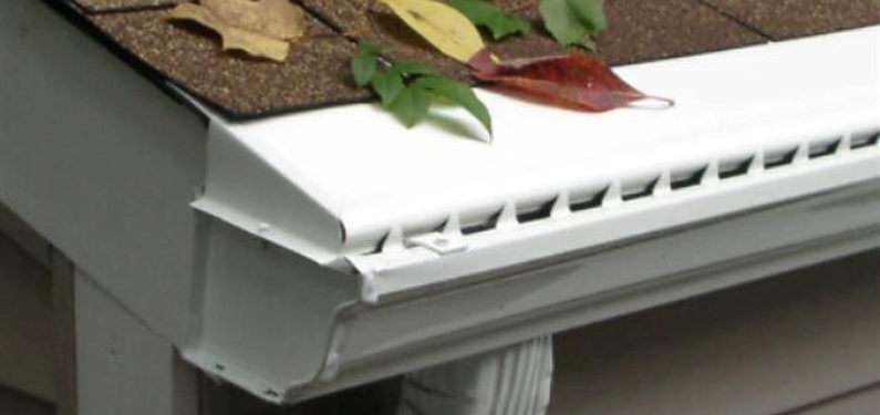 Gutter with guard