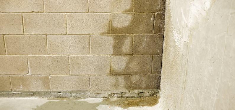 wet concrete wall in a basement